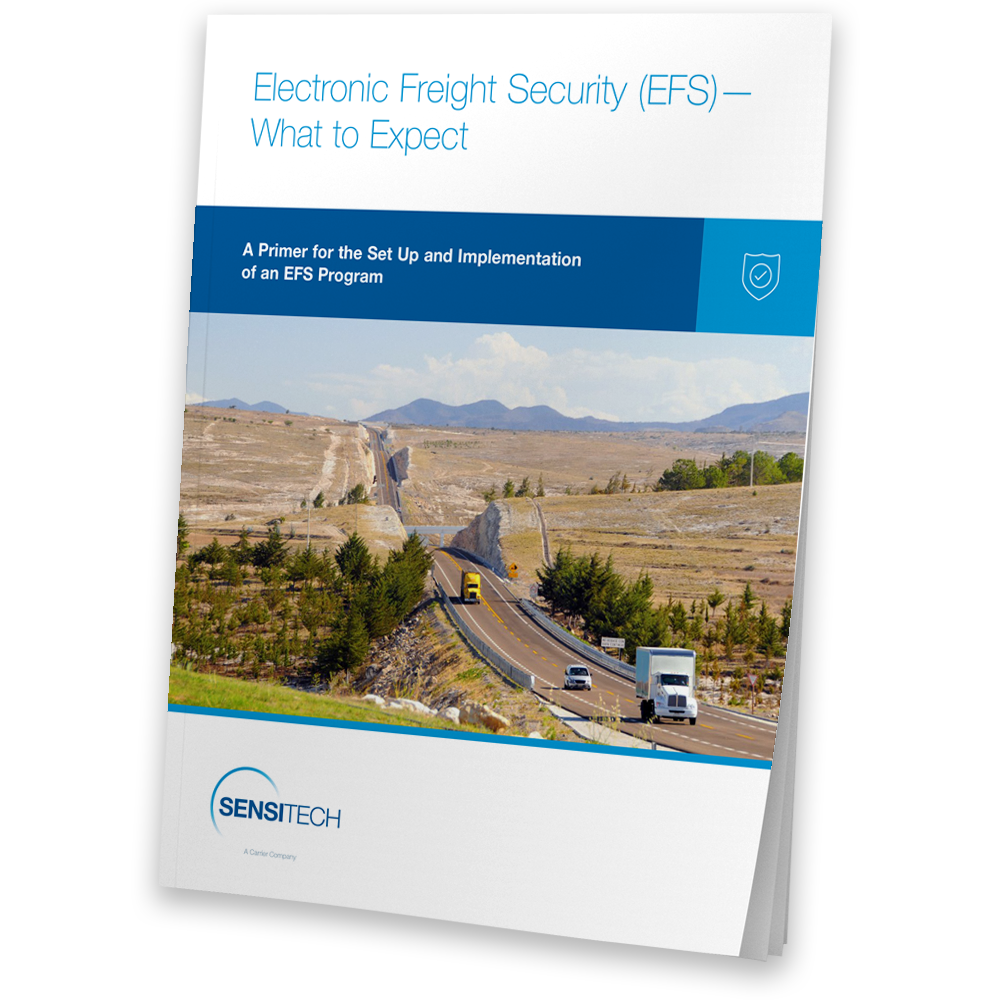 Electronic-Freight-Security